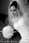 bride Hudson Valley wedding